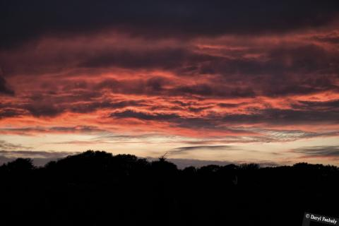 Foreboding Sunset