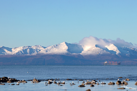 Snow Capped Arran