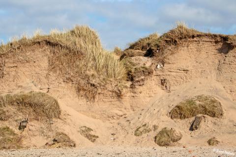Sand Wall